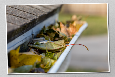 Gutter Cleaning Service in Kansas City